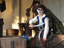 Pirate Draws His Sword